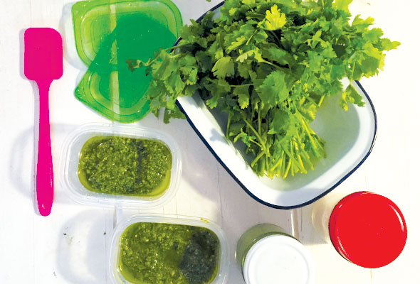 Parsley-&-coriander-salsa